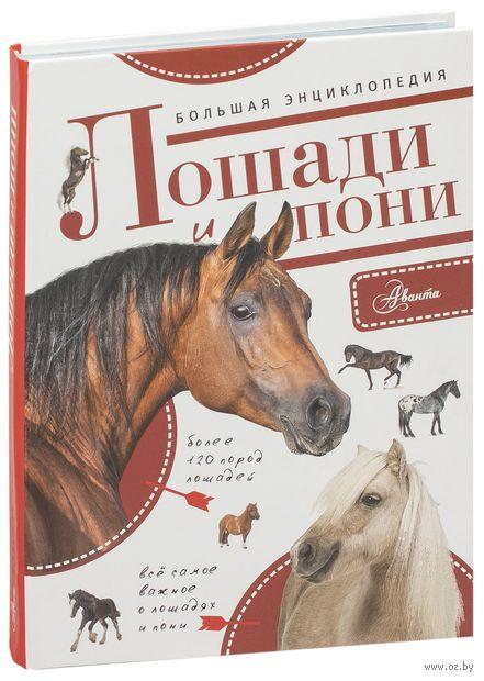 Большая энциклопедия. Лошади и пони — фото, картинка