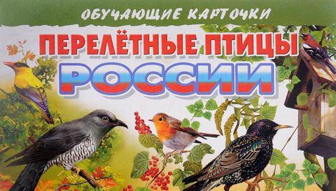 Перелетные птицы России. Обучающие карточки — фото, картинка