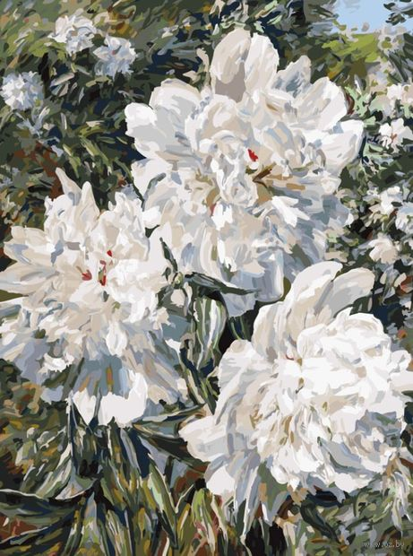 "Картина по номерам ""Пионы в саду"" (300х400 мм) — фото, картинка"