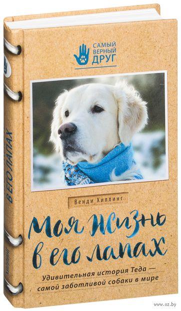 Моя жизнь в его лапах. Удивительная история Теда - самой заботливой собаки в мире — фото, картинка