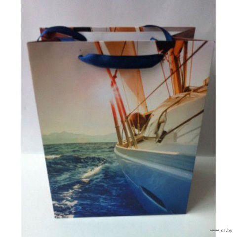 Пакет бумажный подарочный (26х33х13 см; арт. 28688) — фото, картинка