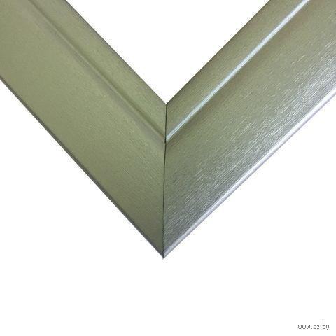 Рамка для картины по номерам (50х65 см; серебро) — фото, картинка