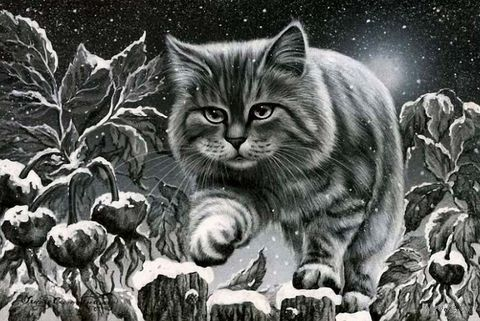 "Алмазная вышивка-мозаика ""Кот на заборе"" (400х300 мм) — фото, картинка"