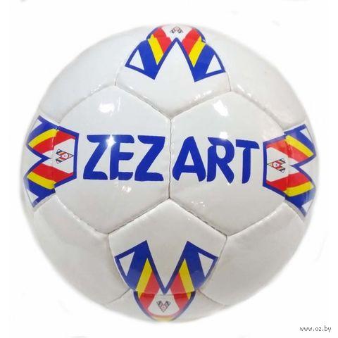 Мяч футбольный №5 (арт. 0081) — фото, картинка