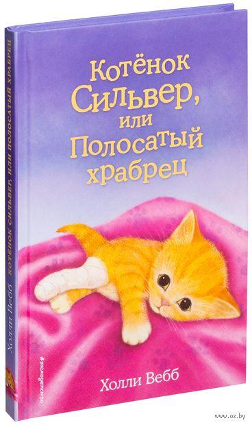 Котёнок Сильвер, или Полосатый храбрец — фото, картинка