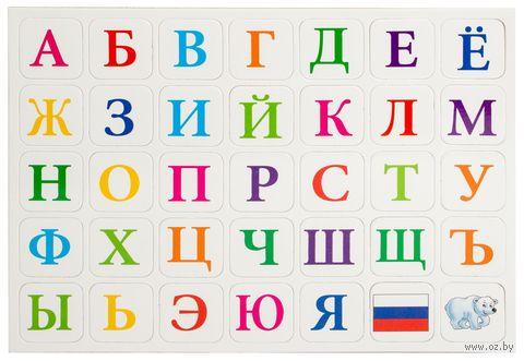 """Набор магнитов """"Алфавит"""" (арт. DV-7840) — фото, картинка"""