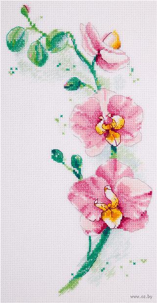 "Вышивка крестом ""Орхидея"" (180х300 мм) — фото, картинка"