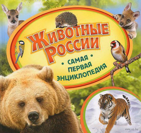 Животные России. Анна Шахова