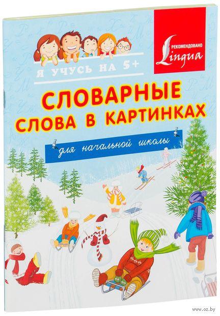 Словарные слова в картинках для начальной школы — фото, картинка