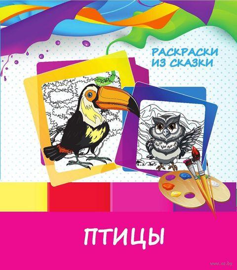 Птицы. Раскраски из сказки — фото, картинка