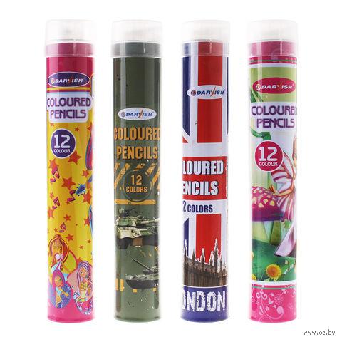 """Цветные карандаши """"Darvish"""" в тубусе + точилка (12 цветов)"""