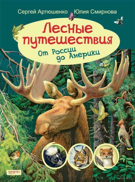 Лесные путешествия. От России до Америки — фото, картинка