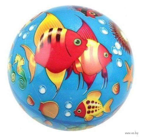 "Мяч ""Мир моря"" (23 см) — фото, картинка"