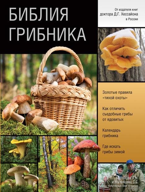 Библия грибника. Александр Матанцев, Светлана Матанцева