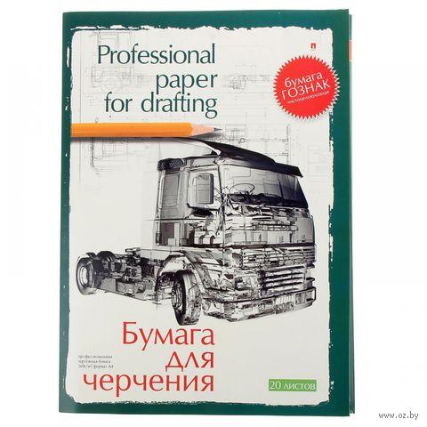 Папка для черчения (А4; 20 листов) — фото, картинка