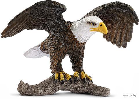 """Фигурка """"Белоголовый орел"""" (5,5 см) — фото, картинка"""
