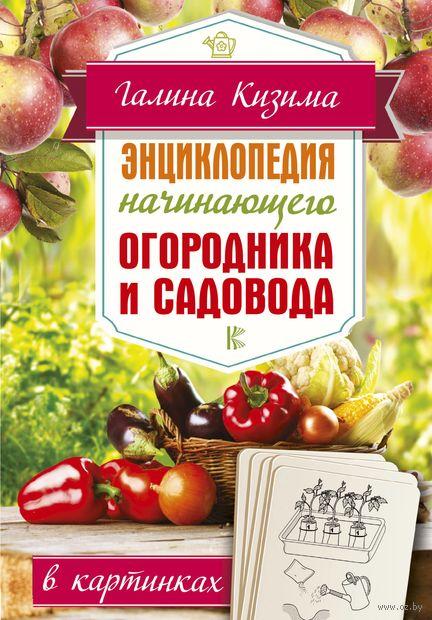 Энциклопедия начинающего огородника и садовода в картинках — фото, картинка