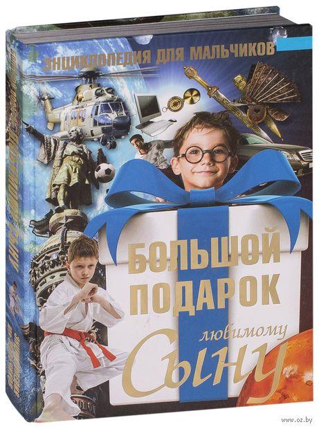 Большой подарок любимому сыну. Энциклопедия для мальчиков. Сергей Цеханский