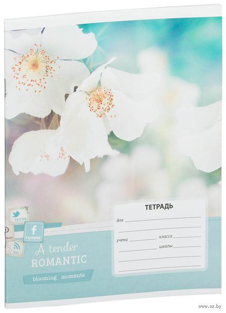 """Тетрадь в линейку 12 листов """"Цветы. Blooming Moments"""""""