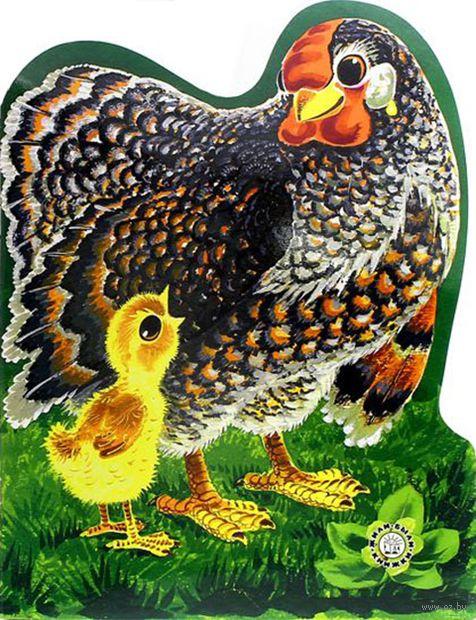 Цыпленок — фото, картинка