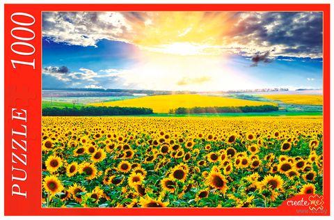 """Пазл """"Поле подсолнухов"""" (1000 элементов) — фото, картинка"""