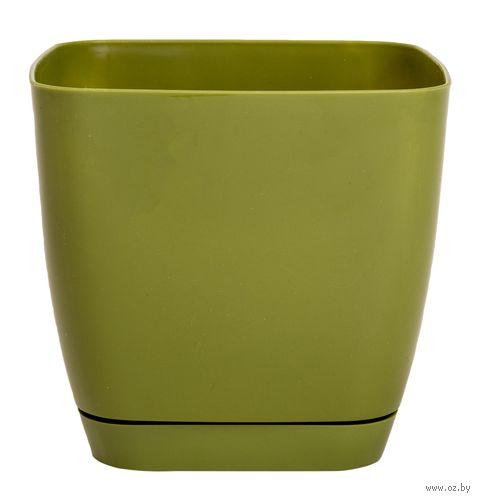 """Цветочный горшок """"Тоскана"""" (13x13х12,5 см; оливковый) — фото, картинка"""