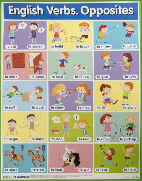 Английские глаголы. Противоположности. Плакат — фото, картинка