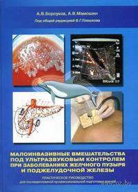 Малоинвазивные вмешательства под ультразвуковым контролем при заболеваниях желчного пузыря и поджелудочной железы. Алексей Борсуков, Андриан Мамошин