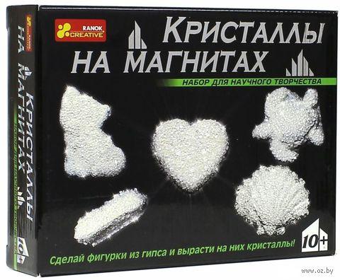 """Набор для выращивания кристаллов """"Кристаллы на магнитах"""" (белые)"""