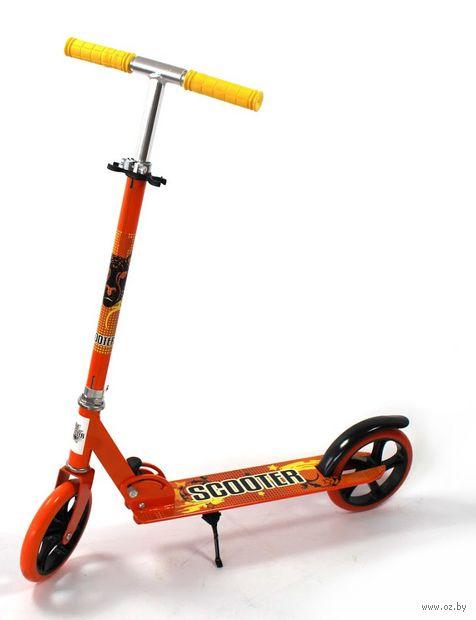 """Самокат двухколёсный """"Scooter"""" (оранжевый; арт. 3623B-OR) — фото, картинка"""