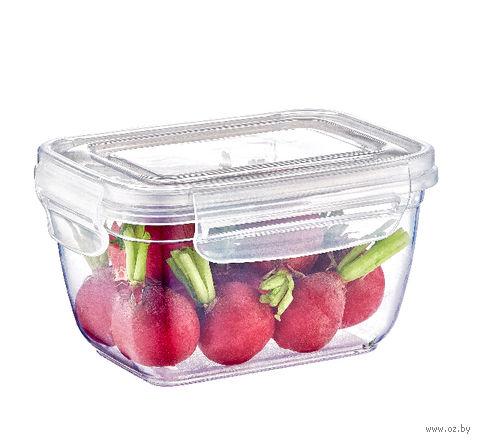 Контейнер для еды (0,55 л; арт. 30221) — фото, картинка