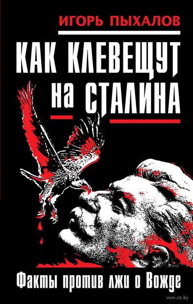 Как клевещут на Сталина. Факты против лжи о Вожде. Игорь Пыхалов