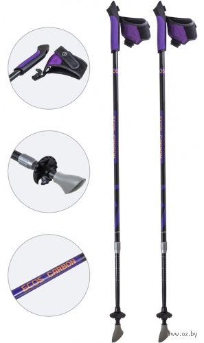Палки для скандинавской ходьбы двухсекционные AQD-B018В (85-135 см; фиолетовые) — фото, картинка