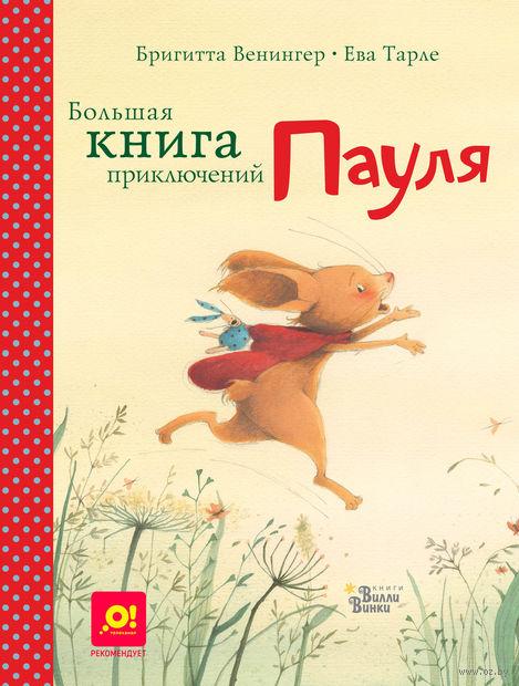 Большая книга приключений Пауля — фото, картинка