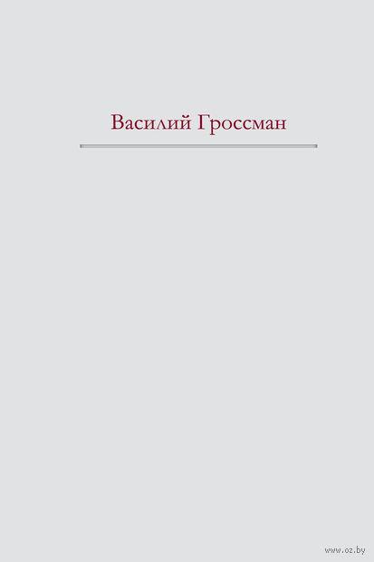 За правое дело. Жизнь и судьба. Василий Гроссман