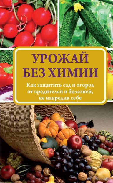 Урожай без химии. Надежда Севостьянова