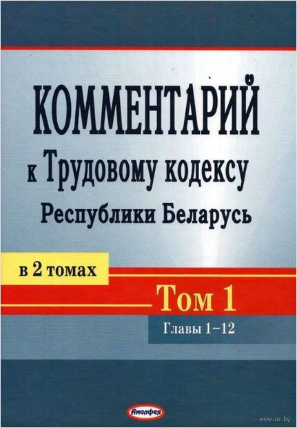 Комментарий к Трудовому кодексу Республики Беларусь. В 2-х томах. Том 1 — фото, картинка