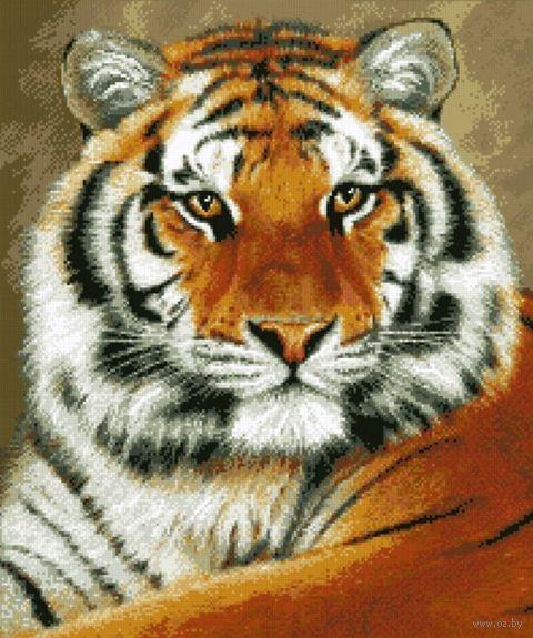 "Алмазная вышивка-мозаика ""Тигр"" (550x460 мм) — фото, картинка"