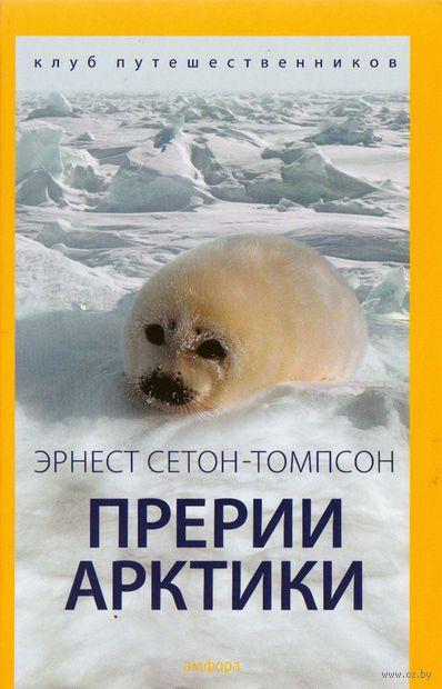 Прерии Арктики — фото, картинка