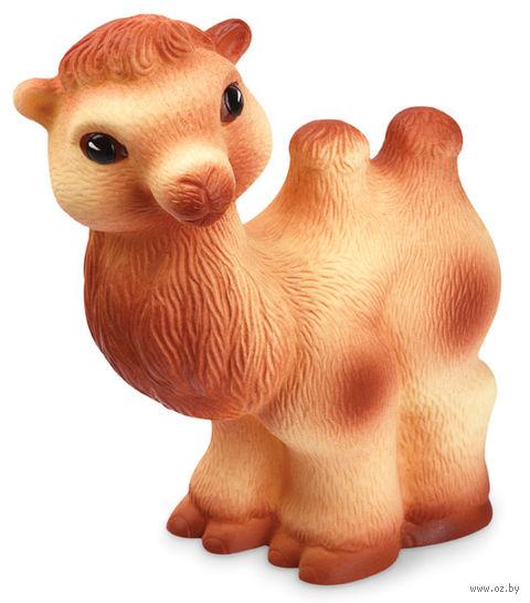 """Игрушка для купания """"Верблюд"""" — фото, картинка"""