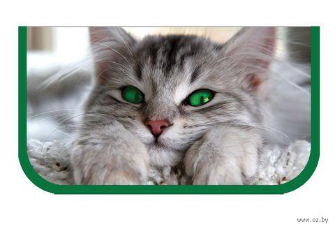 Зелёноглазый кот