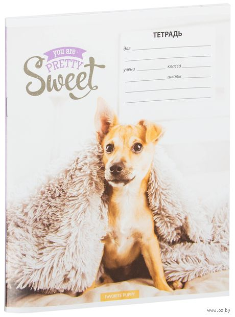 "Тетрадь в линейку ""Pretty Sweet"" (18 листов; в ассортименте) — фото, картинка"