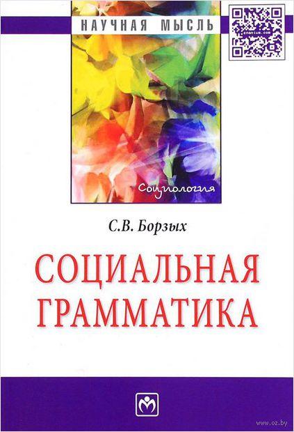 Социальная грамматика. Станислав  Борзых