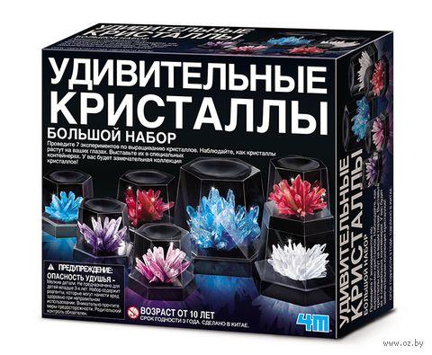 """Набор для выращивания кристаллов """"Удивительные кристаллы. Большой набор"""""""