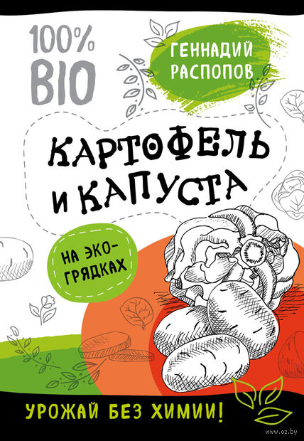 Картофель и капуста на эко грядках. Урожай без химии — фото, картинка