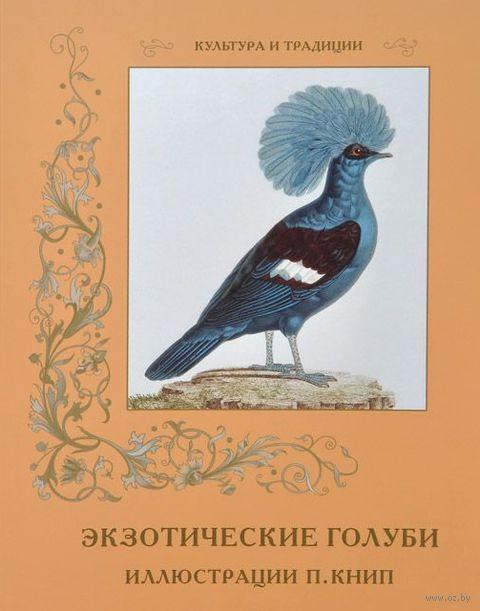 Экзотические голуби — фото, картинка