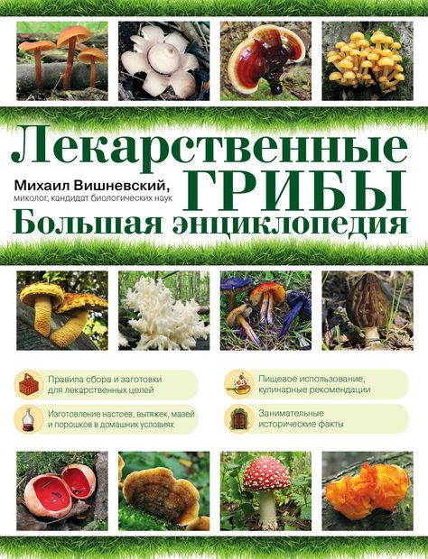 Лекарственные грибы. Большая энциклопедия. Михаил Вишневский