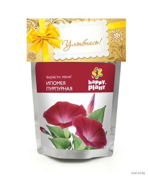 """Набор для выращивания растений """"Ипомея пурпурная"""" — фото, картинка"""