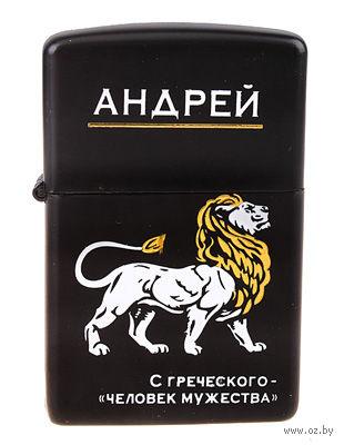 """Зажигалка бензиновая в металлическом корпусе """"Андрей"""" (6х4 см; арт. 10355698)"""