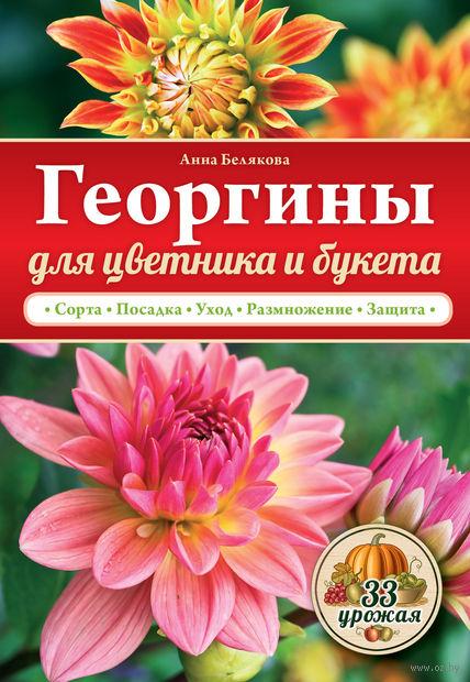 Георгины для цветника и букета. Анна Белякова